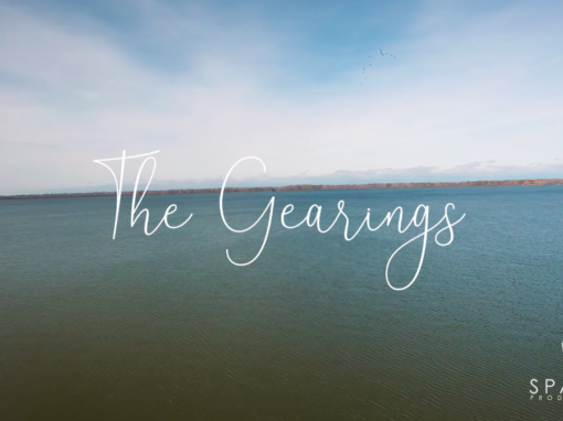 The Gearings